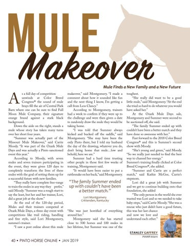 Page 42 of Mule Makeover