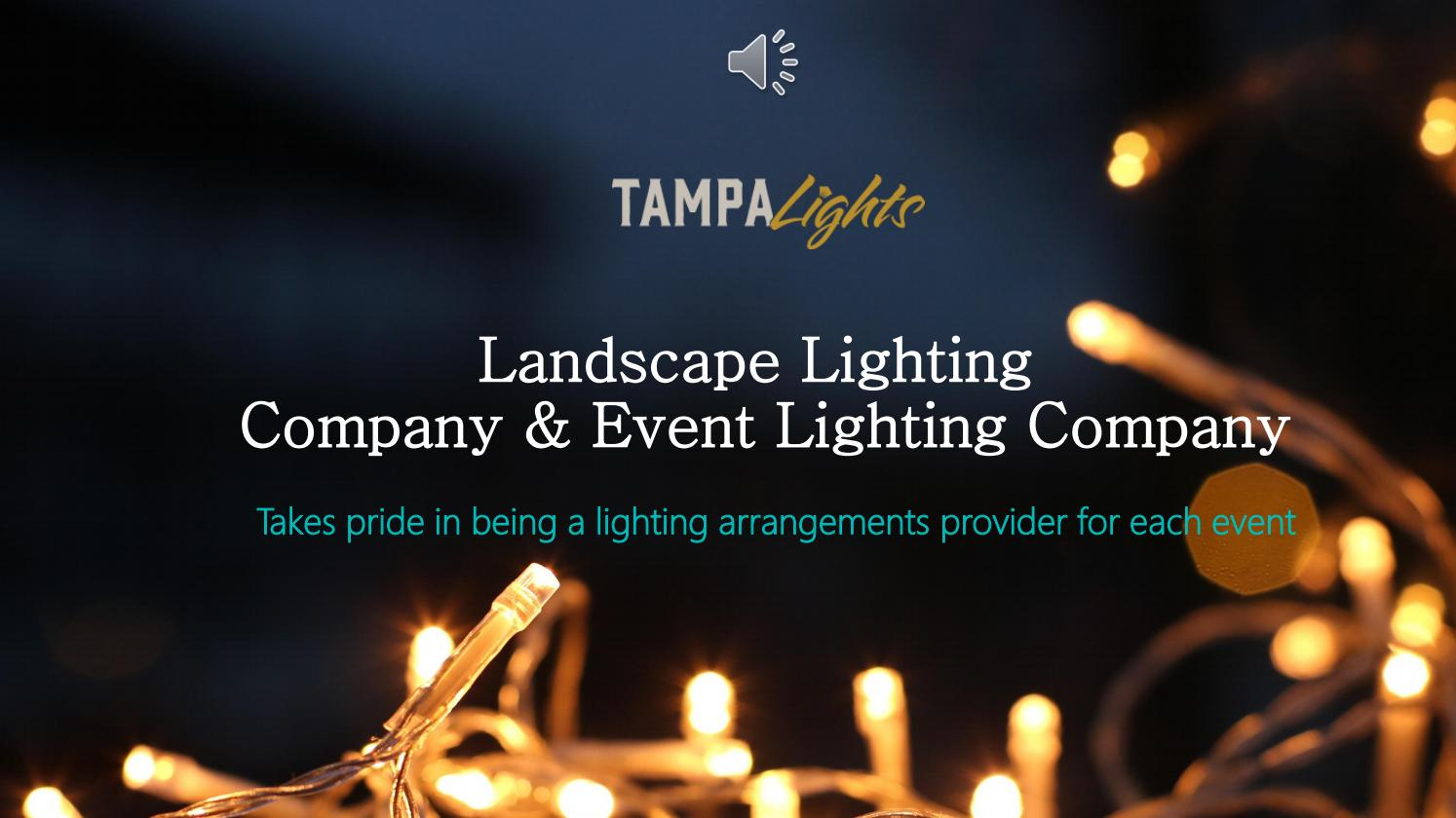 Professional Lighting Services Tampa Lights By