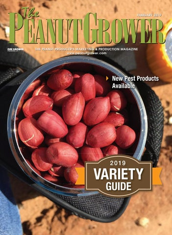 Peanut Grower February 2019 by One Grower Publishing - issuu