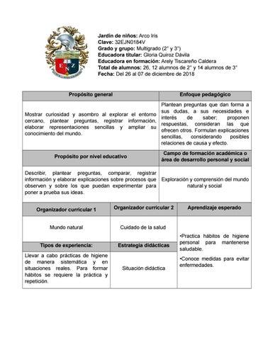 Planeacion 2 By Arely Tiscareño Issuu