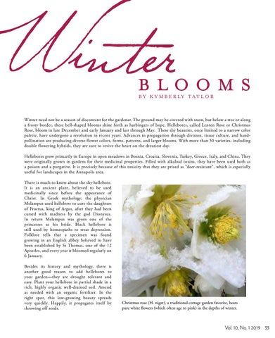 Page 35 of Winter Blooms