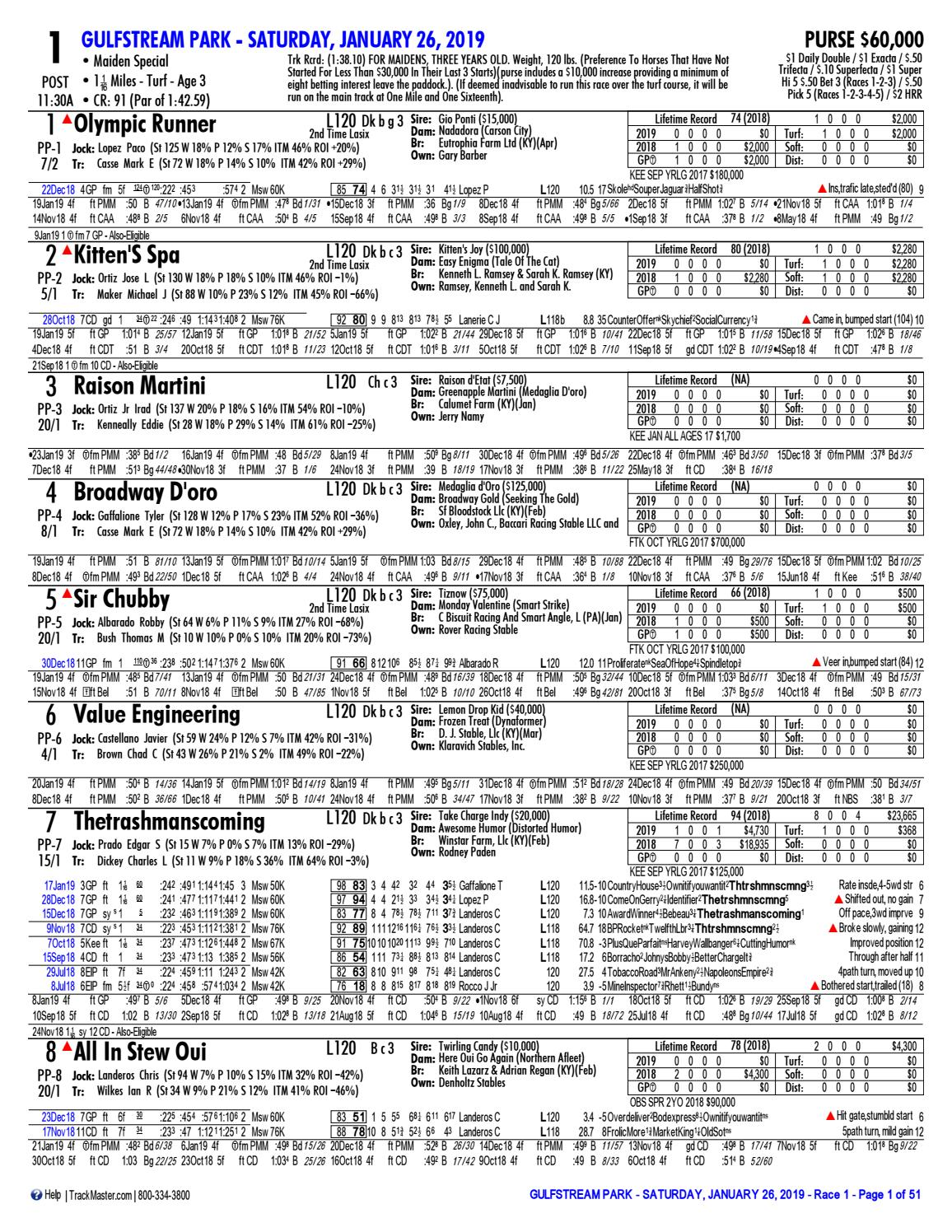 XBGlobal com - Gulfstream Park - Pegasus World Cup by