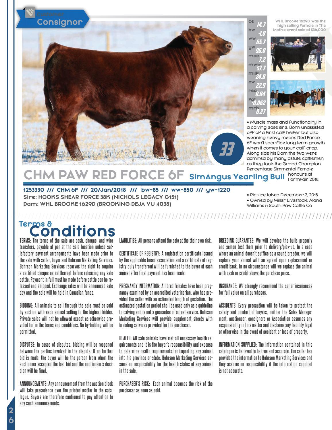 2019 Windy Hill Livestock Bull & Female Online Sale by