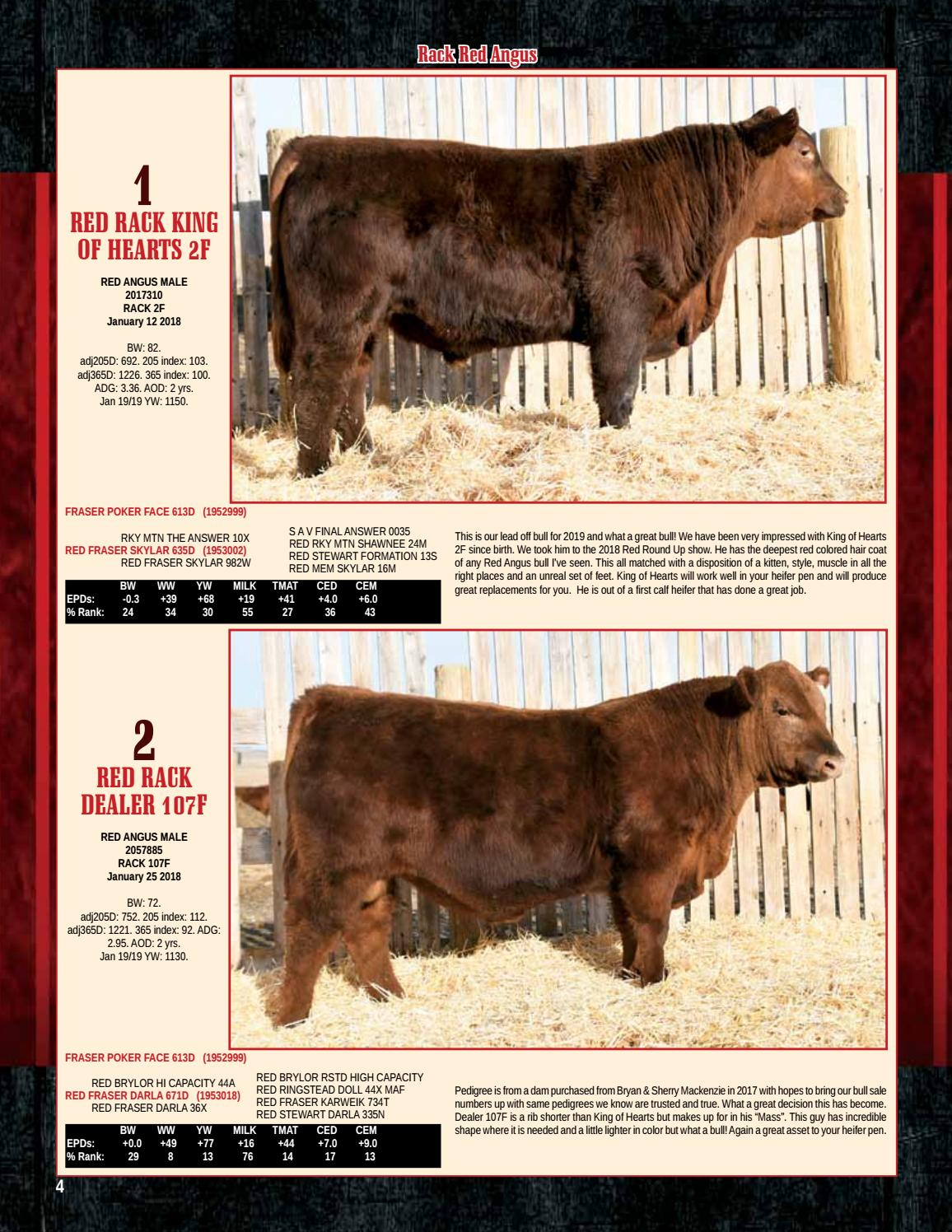 Rack Red Angus Mcg Simmentals Bull Sale By Jamesway Catalogs Issuu