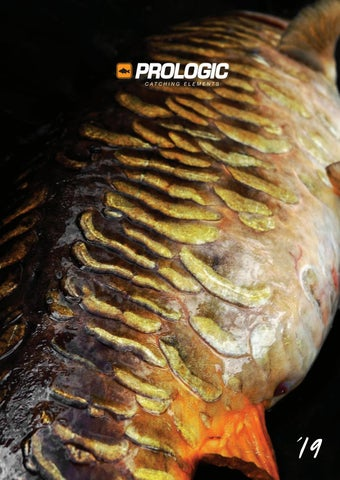 ac2cb24573989 Catalog Prologic 2019 by Arrow International - issuu