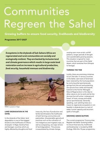 LR_Regreen_the_Sahel_WEB pdf by Both ENDS - issuu
