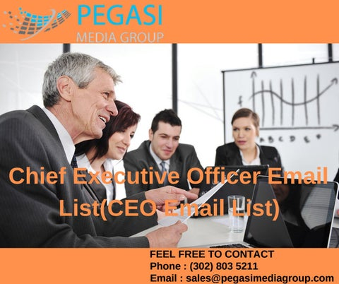 Chief Executive Officer Email List| CEO Mailing List in USA by