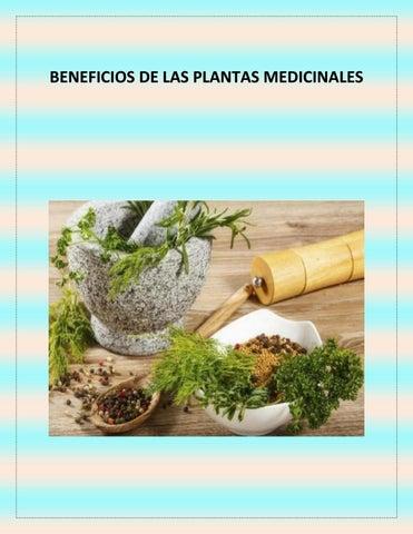 hierbas relajantes del músculo liso para la diabetes