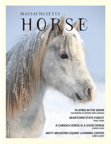 32a8f940675 Massachusetts Horse February/March 2019 by Community Horse Media - issuu