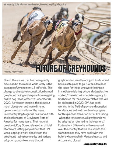 Page 24 of FUTURE OF GREYHOUNDS