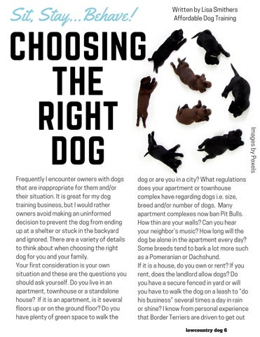 Page 6 of Choosing The Right Dog