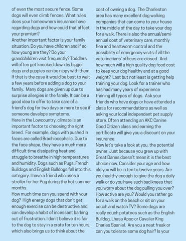 Page 7 of Choosing The Right Dog