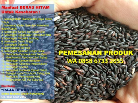 Khasiat Beras Hitam, 0858 6733 2055