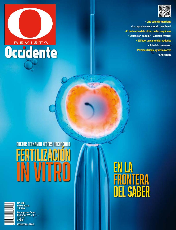 Revista Occidente Nº 490 | Enero-Febrero 2019 by Gran Logia de Chile - issuu