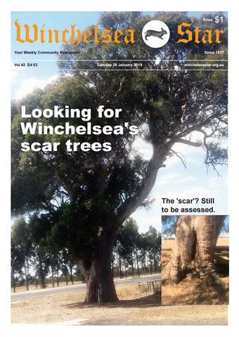 c81b53b5804 Winchelsea Star 6 February 2019 Vol 42 Ed 04 by The Winchelsea Star ...