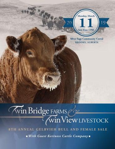 40338b97d28 Twin Bridge Farms and Twin View Livestock 8th Annual Gelbvieh Bull and  Female Sale