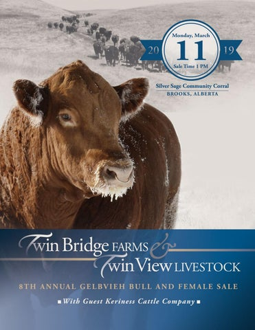 Twin Bridge Farms & Twin View Livestock Gelbvieh Bull & Female Sale
