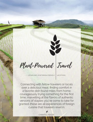 Page 30 of Plant-Powered Travel