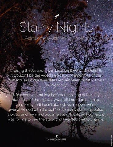 Page 62 of Starry Nights