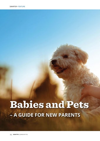 Page 14 of Babies and Pets