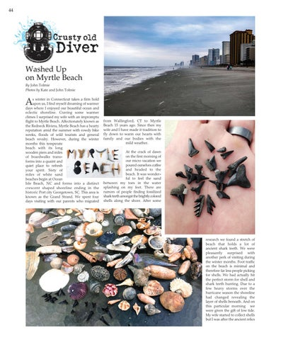 """Page 44 of CRUSTY OLD DIVER - """"Washed Up  on Myrtle Beach"""""""