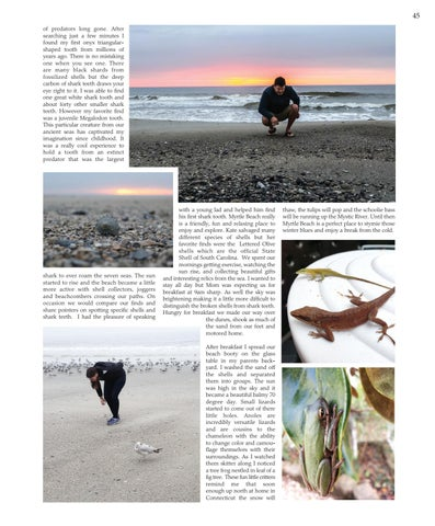 """Page 45 of CRUSTY OLD DIVER - """"Washed Up  on Myrtle Beach"""""""