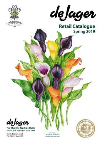 e0450bfe6 De Jager Retail Catalogue Spring 2019 by emma simpson - issuu
