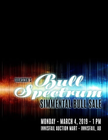 Transcon's Bull Spectrum Simmental Bull Sale 2019 by Keltey Whelan