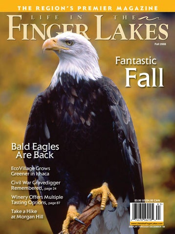 d7649da38 Life in the Finger Lakes Fall 2008 by Fahy-Williams Publishing - issuu