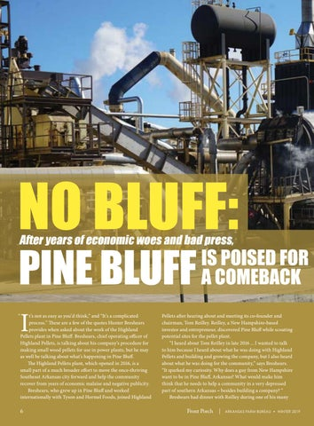 Page 8 of Pine Bluff Rising?