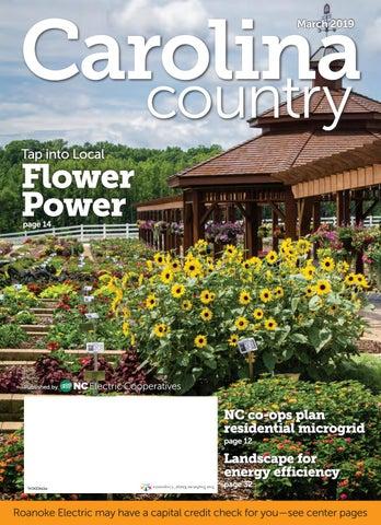 2019-03-REC by Carolina Country - issuu