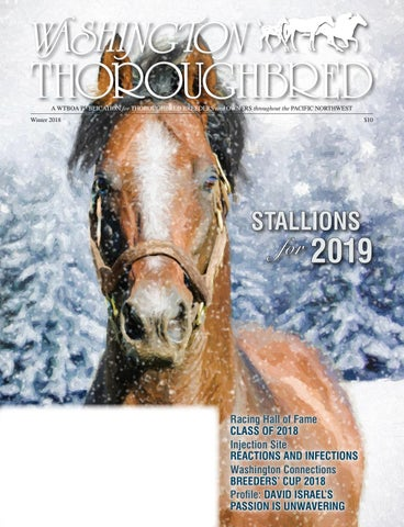 d088709b22c Washington Thoroughbred Winter 2018 Stallion Register by WTBOA - issuu