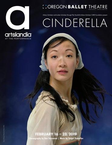 not cinderellas type book