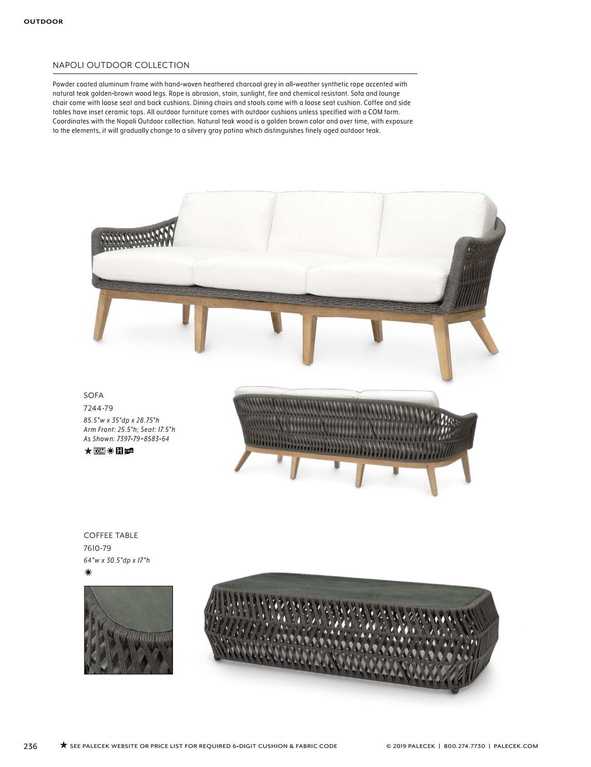 Wondrous Palecek 2019 Furniture Accessories Catalog By Theyellowbook Wood Chair Design Ideas Theyellowbookinfo