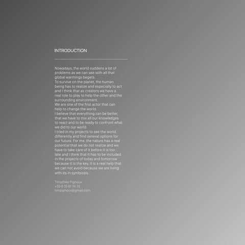 Page 2 of Portfolio Introduction