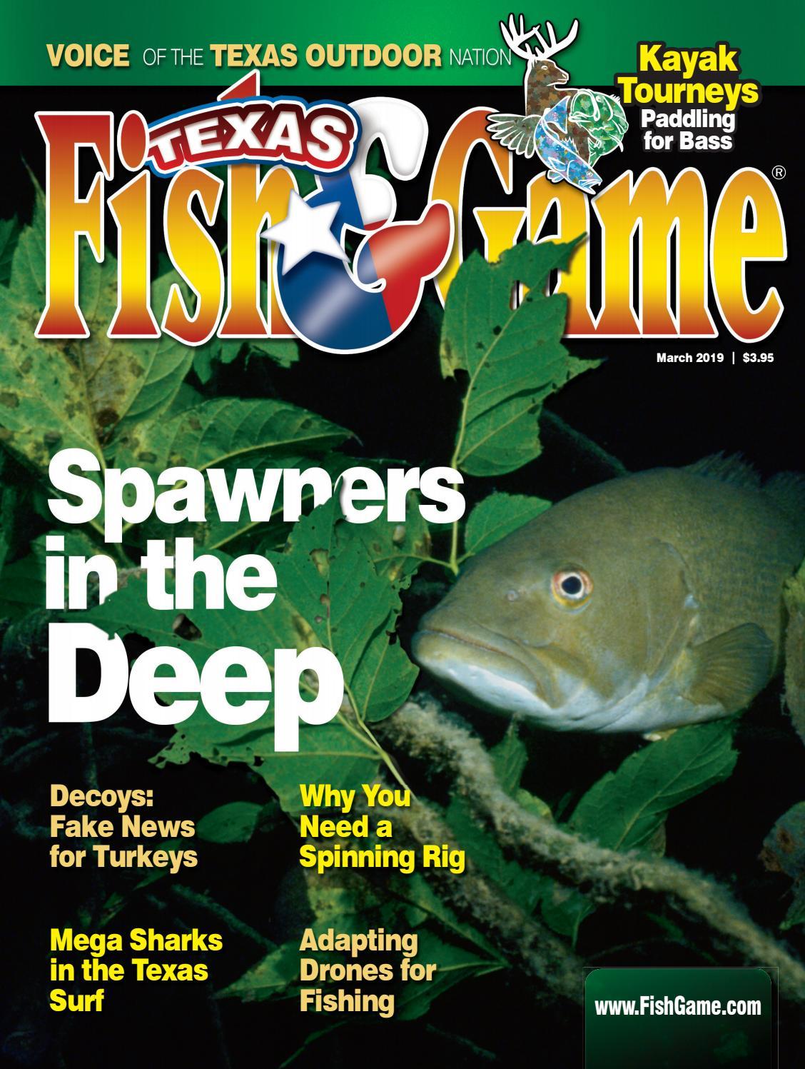 12 Carolina Ready Rigs 3//4 oz /& 1oz 2//0 hook Flounder drum redfish bass fishing