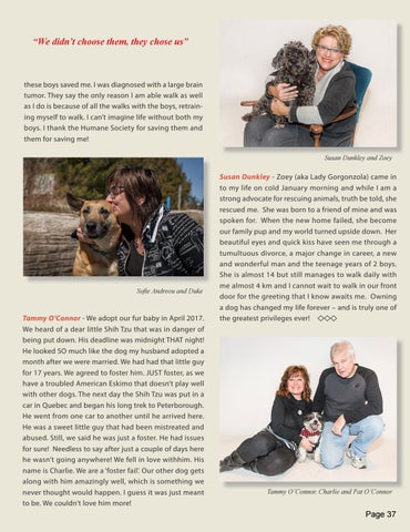 Page 37 of Puppy Love - Rescue and Adoption pets