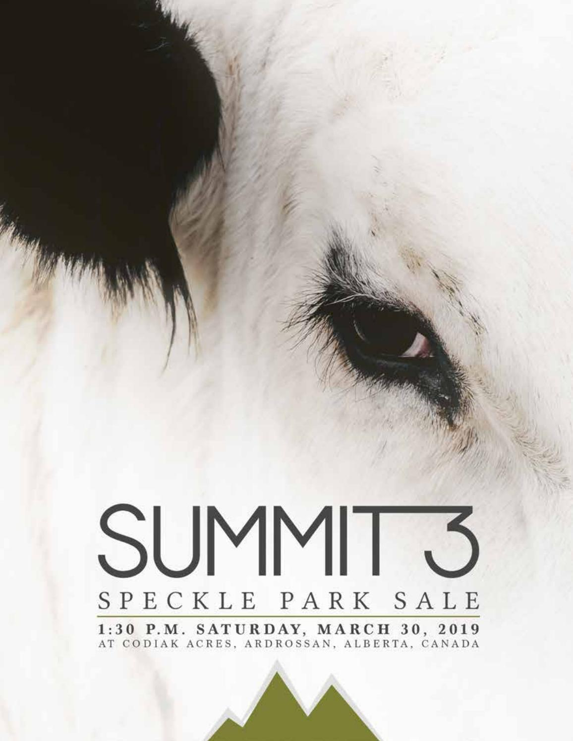 Summit3 2019 Sale Catalogue by Today's Publishing Inc  - issuu