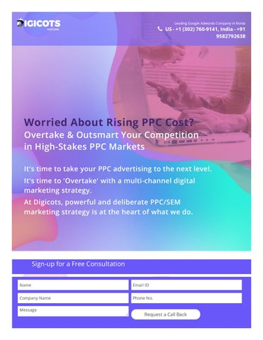 PPC Company in Noida - Pay Per Click Advertising Agency