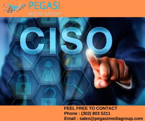 CISO Email Lists | CISO Mailing Lists | CISO Email Database in USA