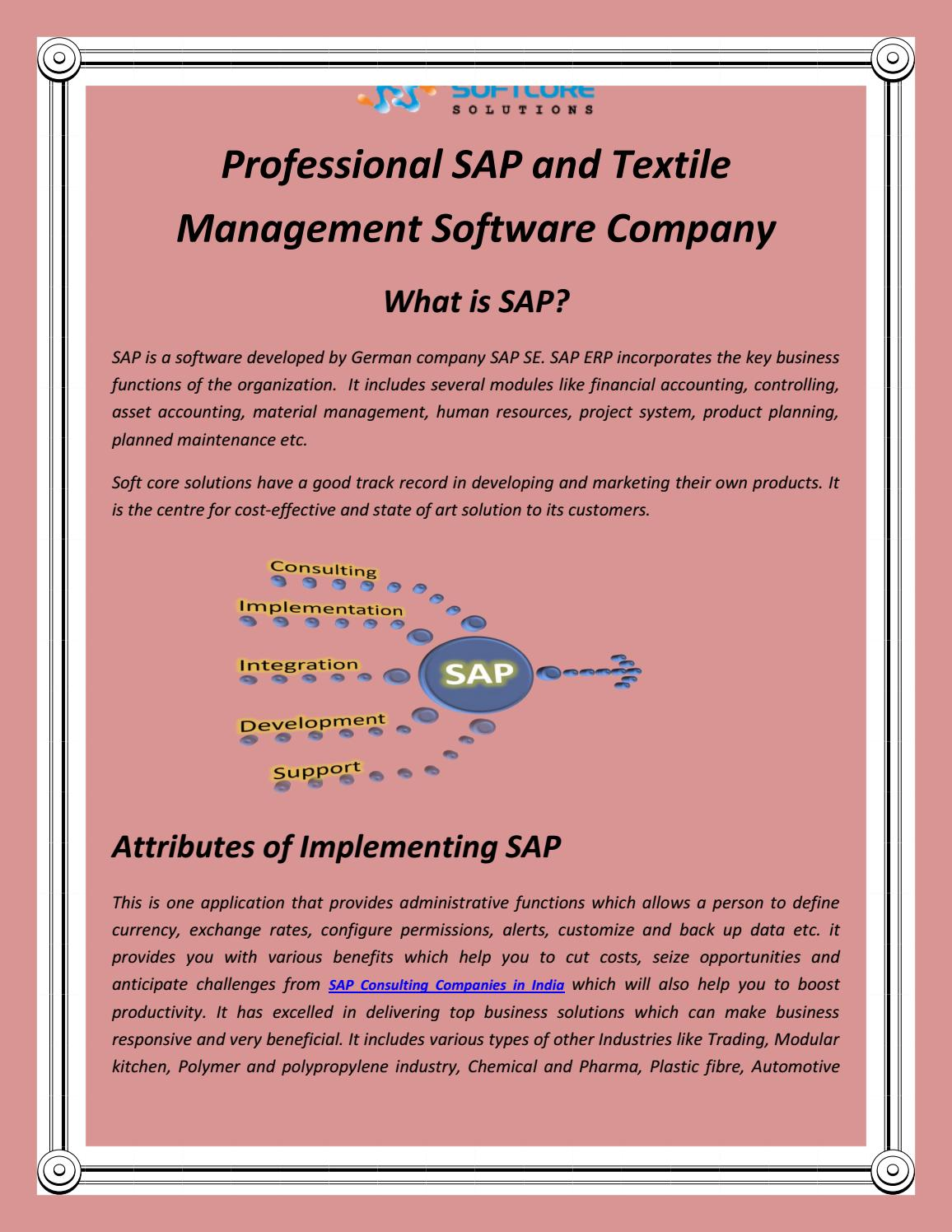 Professional SAP and Textile Management Software Company by