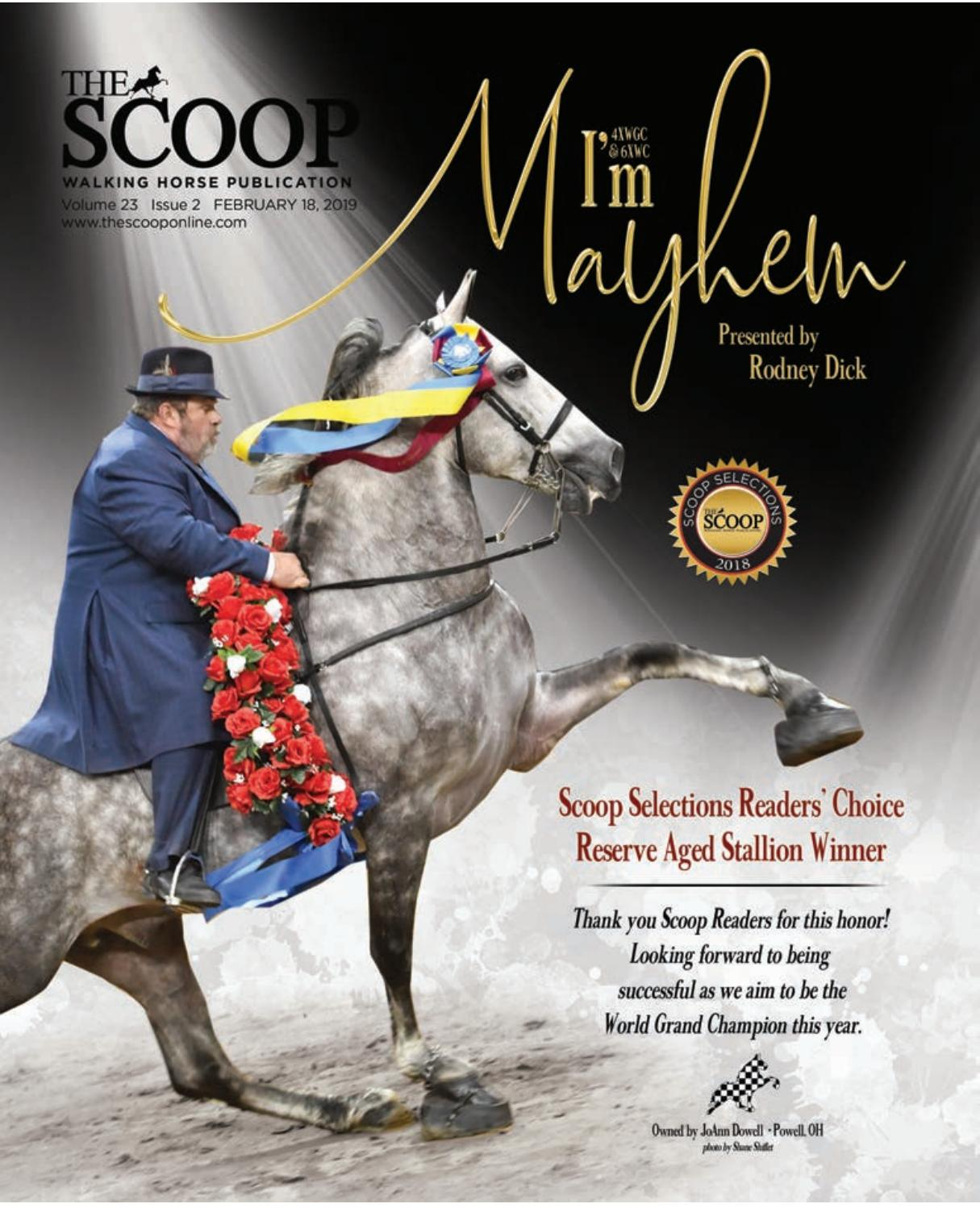 The Scoop by graphics123 - issuu