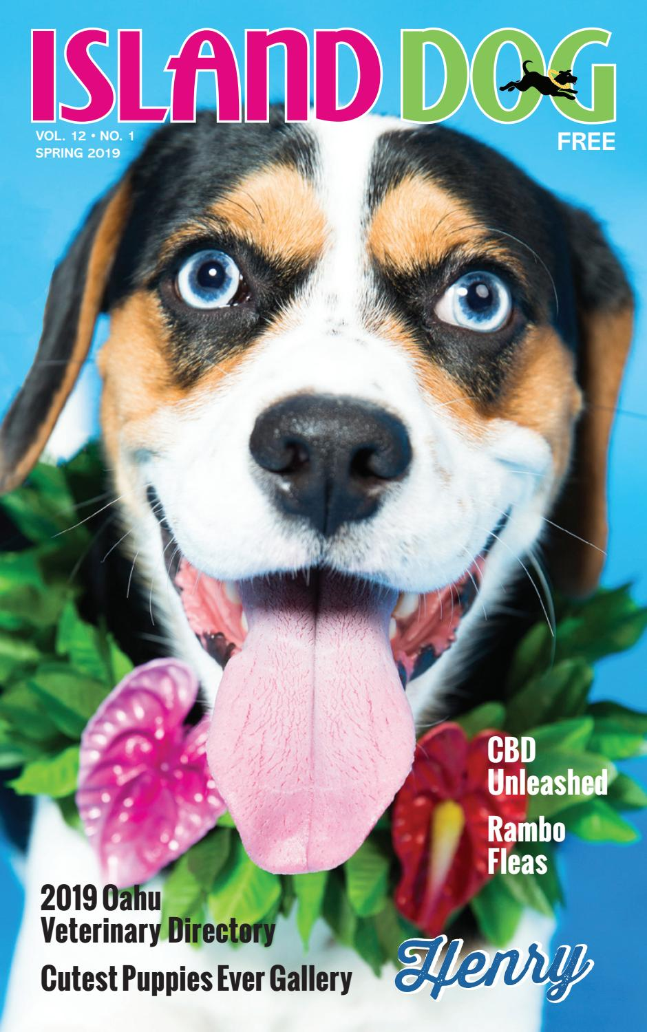 Island Dog Magazine Spring 2019 By Island Dog Magazine