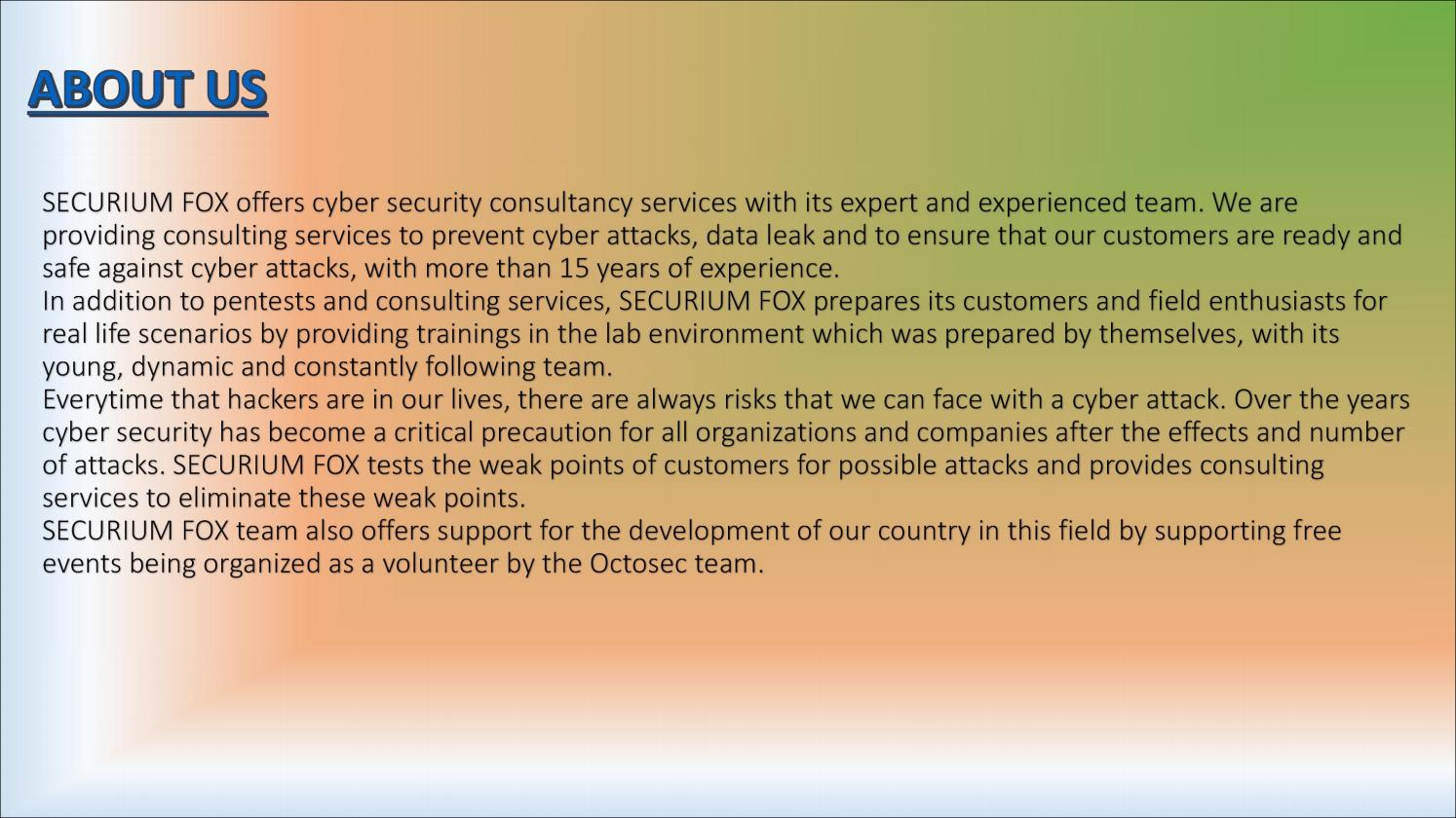 penetration testing training in china by