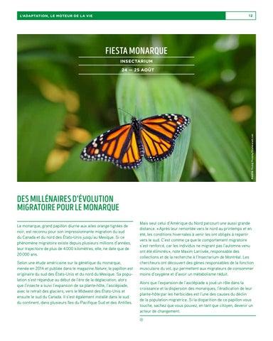 Page 12 of Des millénaires d'évolution migratoire pour le monarque