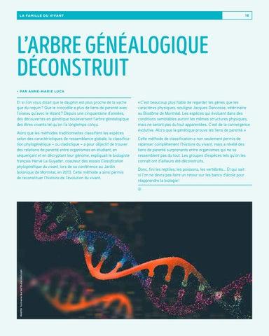 Page 18 of L'arbre généalogique déconstruit