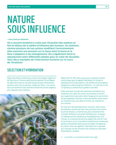 Page 28 of Nature sous influence