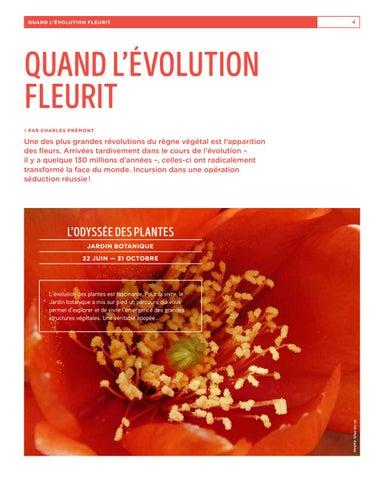 Page 4 of Quand l'évolution fleurit