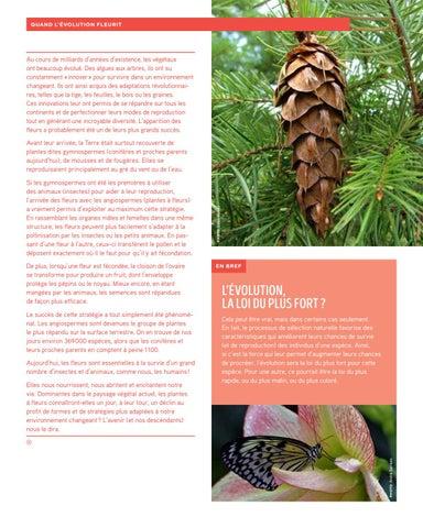 Page 5 of Quand l'évolution fleurit