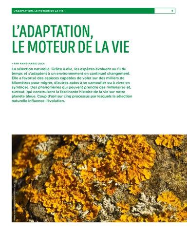 Page 8 of L'adaptation, le moteur de la vie